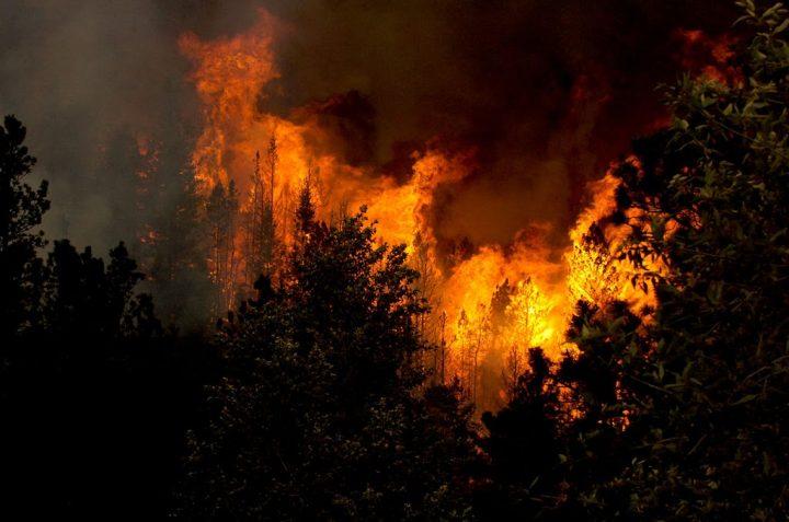 2017 Colorado Wildfire Outlook