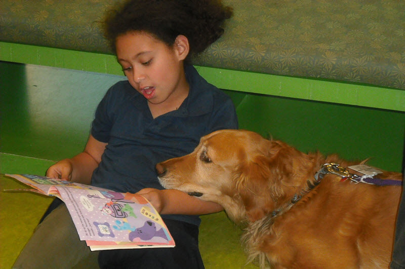 Spotlight on Sharing: Therapy Dogs Help Struggling Readers