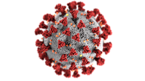Illustration of Coronavirus