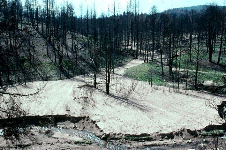 Time Machine Tuesday: Buffalo Creek, 20 Years Later