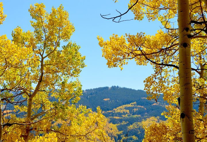 Where to Go to See Fall Colors