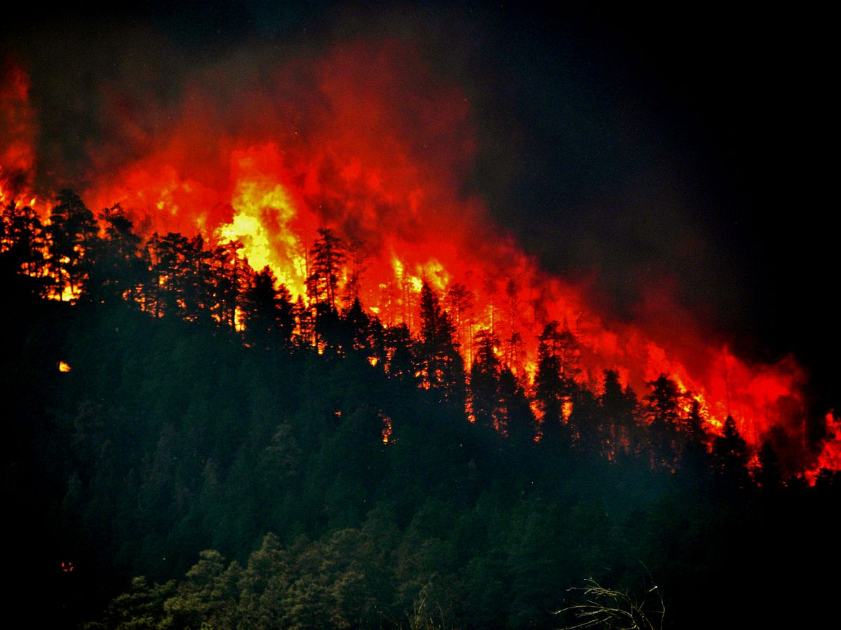 Fire and Flood Season is Coming – Is Your Library Ready?
