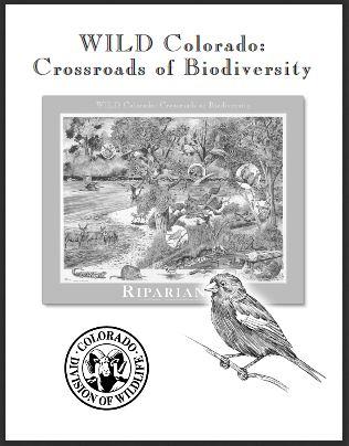 Colorado's Biodiversity