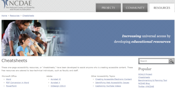 image of NCDAE website