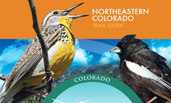New Birdwatching Guide