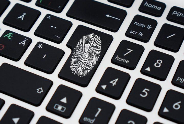 Business Identity Theft