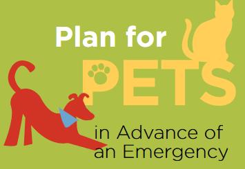 Creating a Community Animal Disaster Plan
