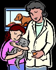 Veterinary Medicine in Colorado